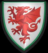end of career Wales